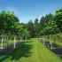 2_Pflanzenproduktion_Baumefoto_web