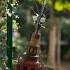 Skulpturengarten_Foto_Daniela-Incoronato_3_web