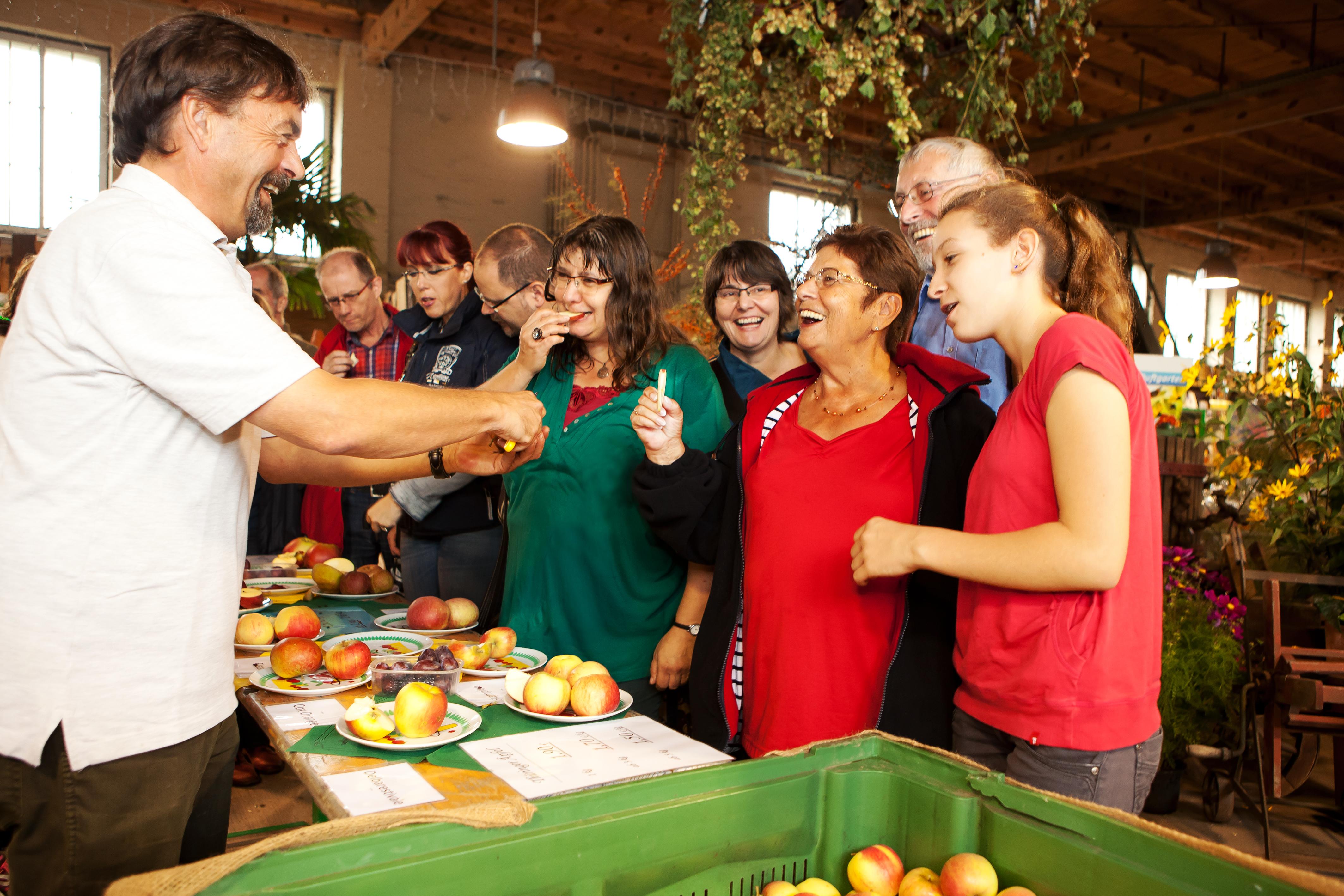Traditionsfest in den Späth'schen Baumschulen, Pressefoto: Apfelverkostung, 7,97 MB