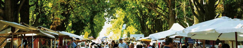 """Gartenmarkt """"Späth'er Frühling"""" am 5. und 6. Mai in den Späth'schen Baumschulen in Berlin"""