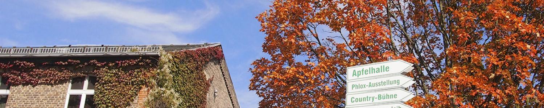 Pflanzen für Garten, Terrasse und Balkon in den Baumschulen Späth in Berlin