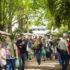 Blick in die Eichenallee auf dem Gelände, gut gefüllt mit Besucherinnen und Besucherin des Gartenmarktes