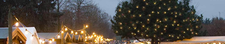 Weihnachtsmarkt: Ansicht mit Lichterbaum und Weihnachtshütten