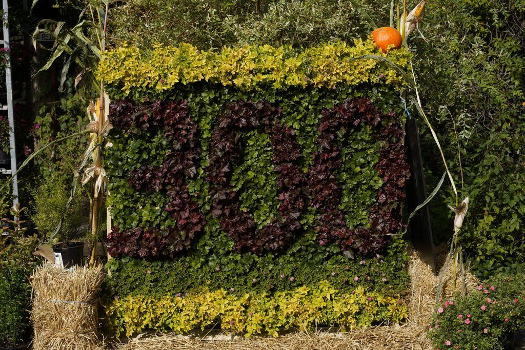 Glückwunsch zum 300. Geburtstag mit Pflanzen
