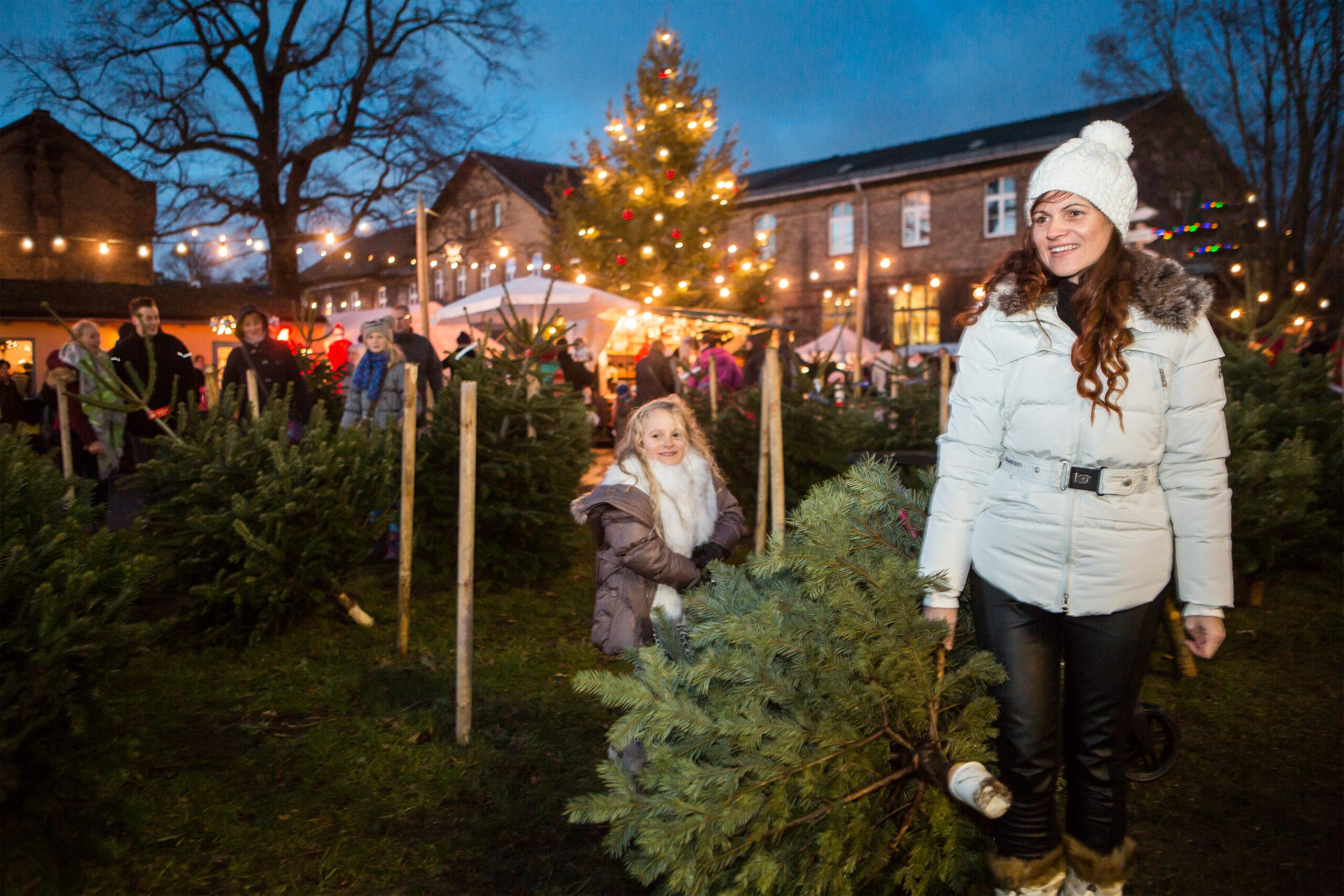 Mutter  mit Tochter tragen einen Weihnachtsbaum