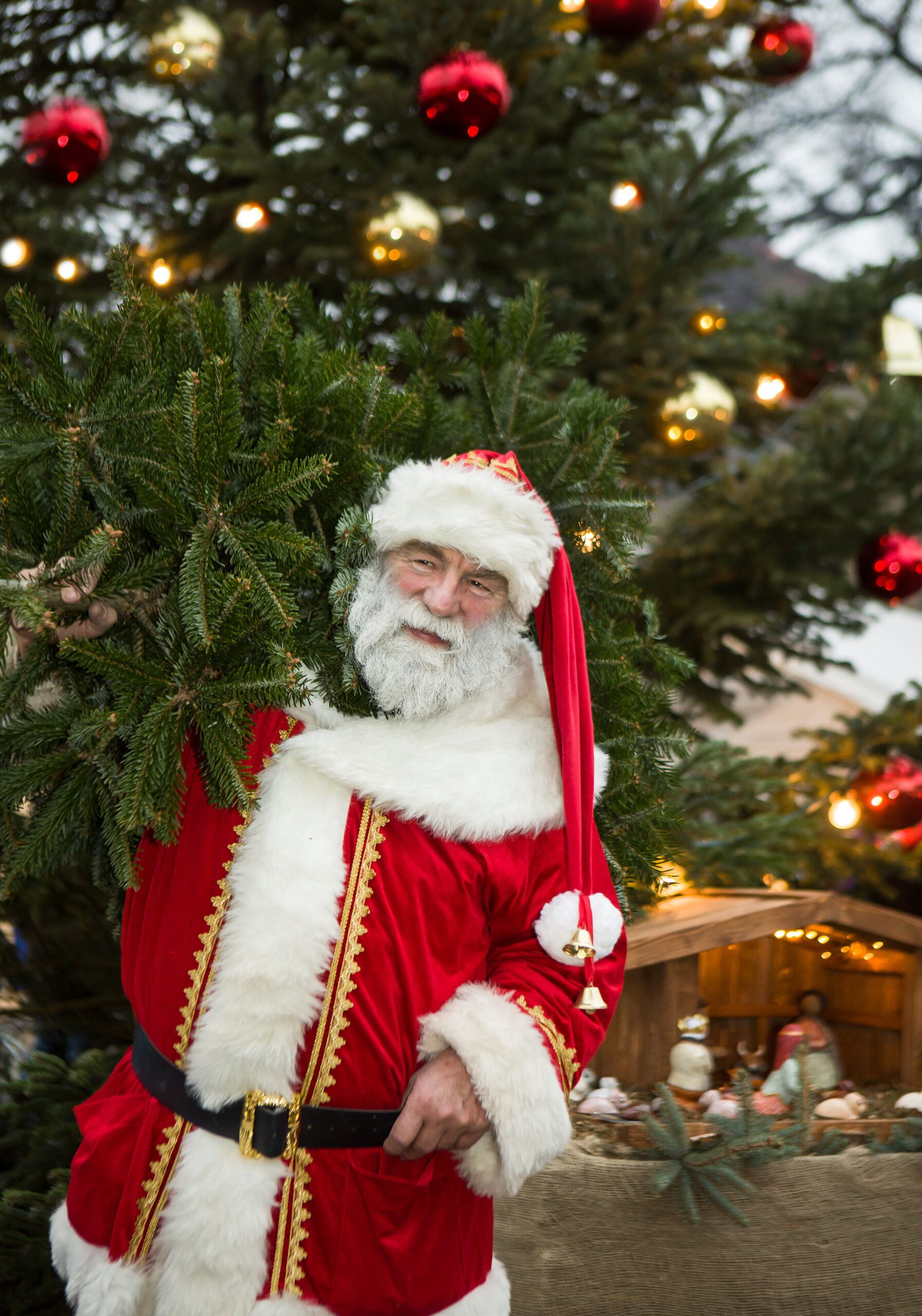 Weihnachtsmann mit Weihnachtsbaum vor einer Weihnachtskrippe