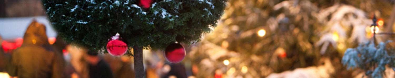 Weihnachtsbaum mit roten Kugeln vor winterlichem Hintergrund