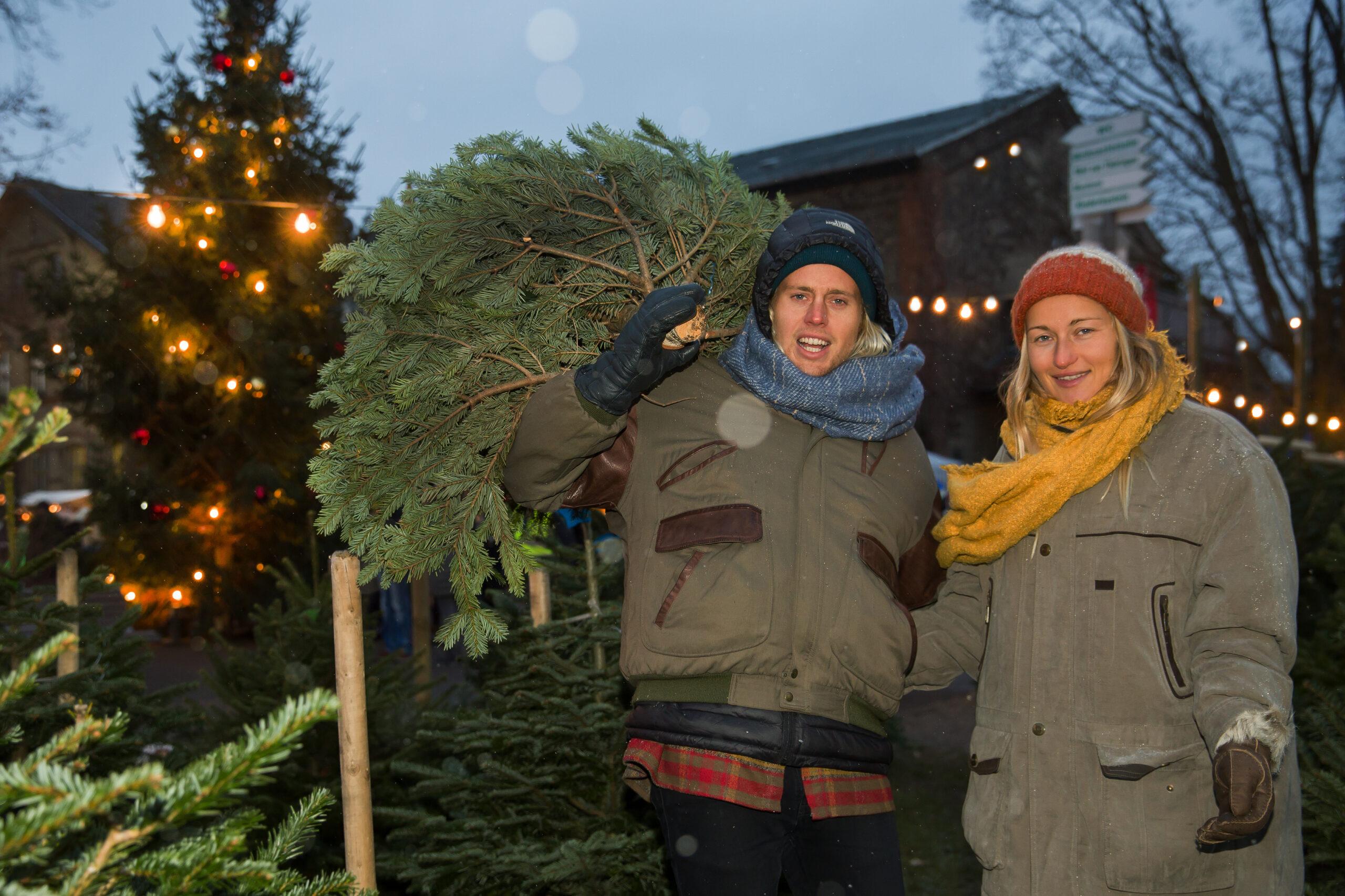 Weihnachtsbaum-Kauf